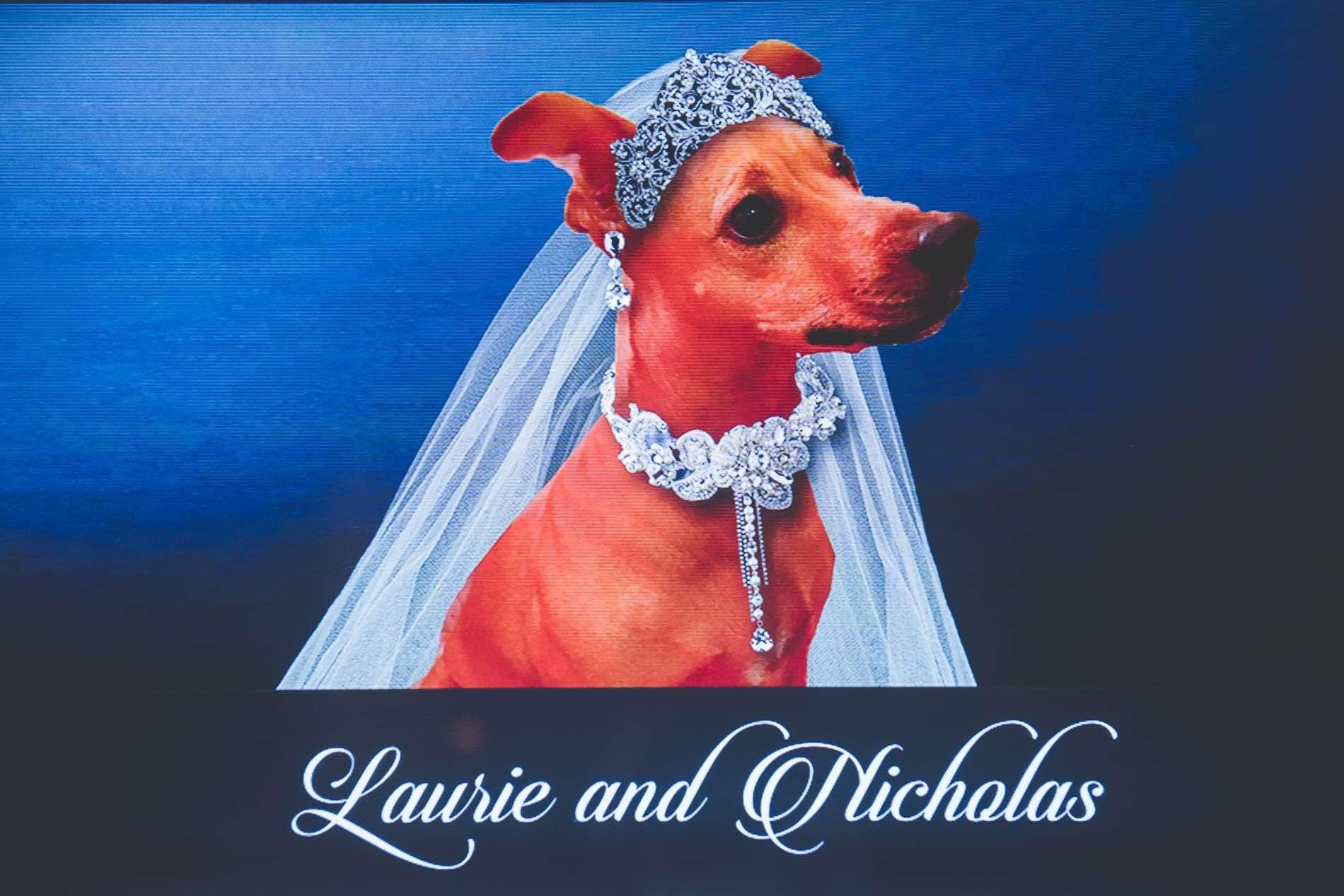 Wedding at Tendenza in Philadelphia